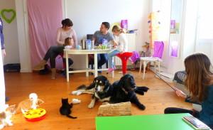 Katzenwelpen vom Netzwerk 1