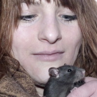 Rattenkinder 7